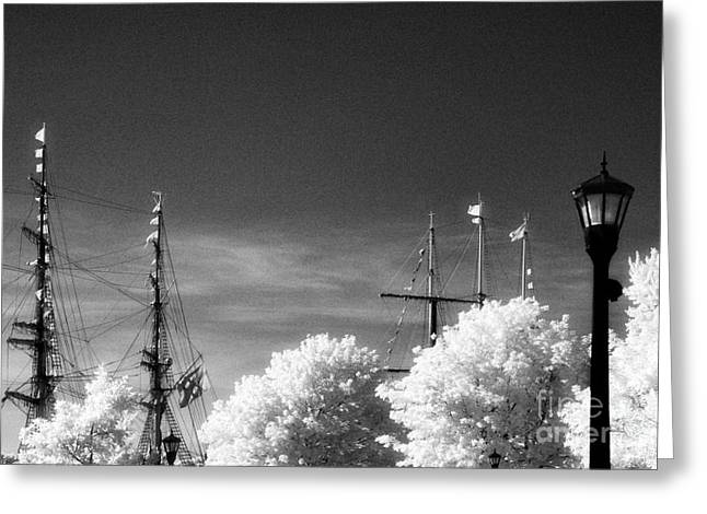 Tall Ships Greeting Card by Jeff Holbrook