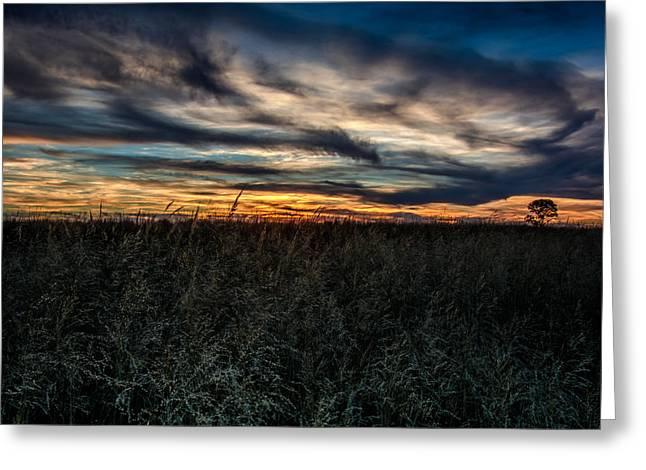 Tallgrass Sunset Greeting Card