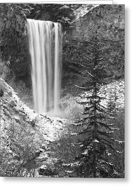 Tamanawas Falls In Winter Greeting Card
