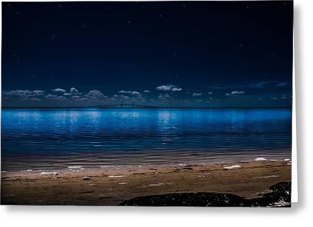 Greeting Card featuring the photograph Tampa Bay Nights by Randy Sylvia