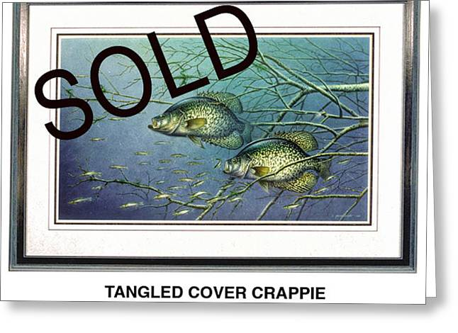Tangled Cover Crappie Greeting Card by Jon Q Wright