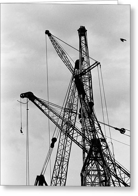 Tangled Crane Booms Greeting Card