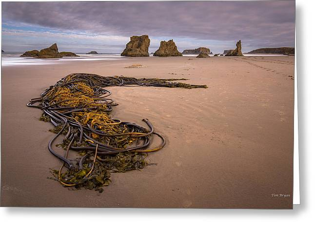 Tangled.... Bandon Oregon Greeting Card by Tim Bryan