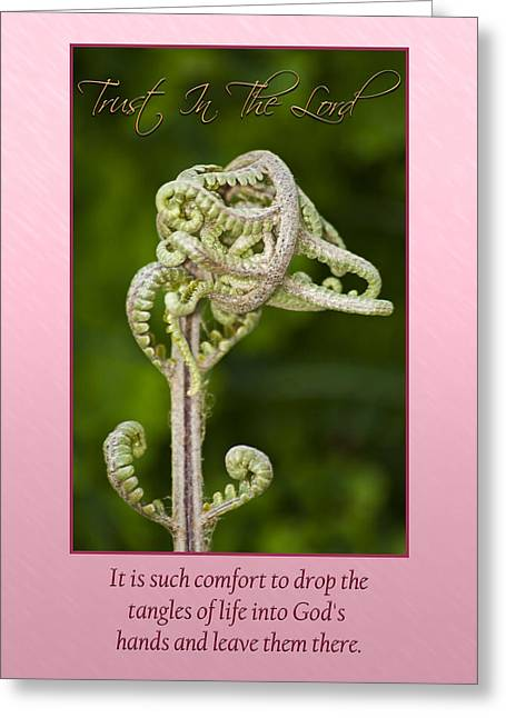 Tangles Greeting Card by Carolyn Marshall