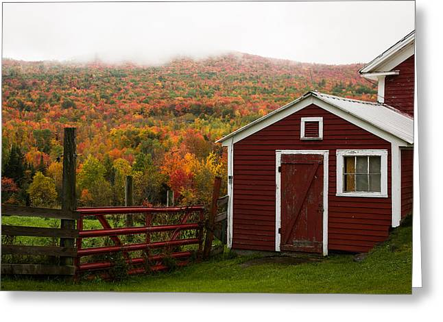 Tapestry Of Fall Colors Greeting Card by Jeff Folger