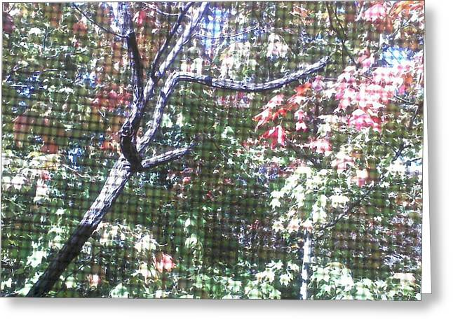 Tapestry Of Leaves 1 Greeting Card by Gayle Price Thomas