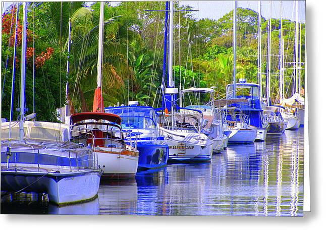 Greeting Card featuring the photograph Tarpon River by Artists With Autism Inc