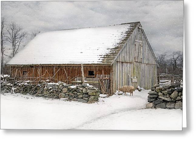 Taste Of Winter Greeting Card by Robin-Lee Vieira