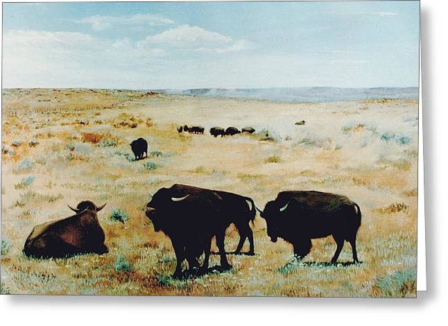 Tatanka Greeting Card
