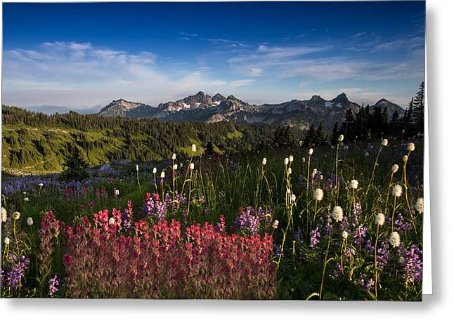 Tatoosh Mountain Range Greeting Card by Larry Marshall
