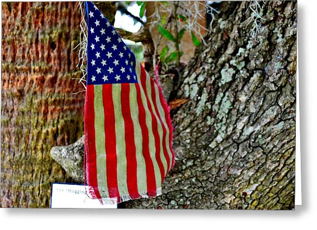 Tattered America Greeting Card