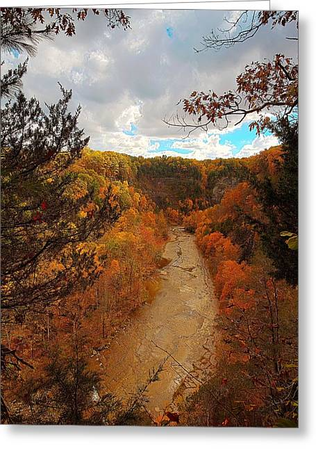 Taughannock River Canyon In Colorful Fall Ithaca New York IIi Greeting Card