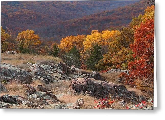 Taum Sauk Mountain Glade 2 Greeting Card by Greg Matchick