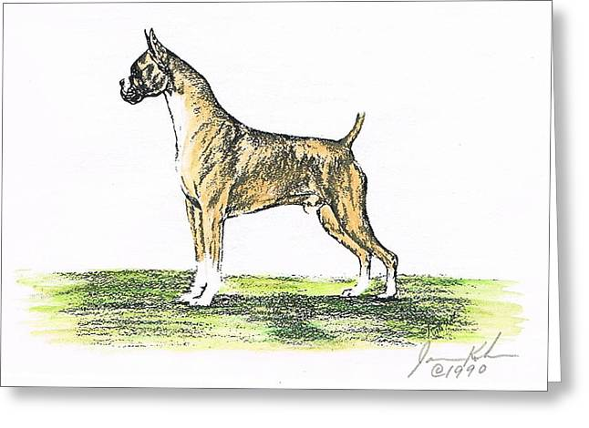 Tawny Boxer Greeting Card by Joann Renner