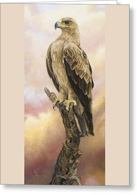 Tawny Eagle Greeting Card by Lucie Bilodeau