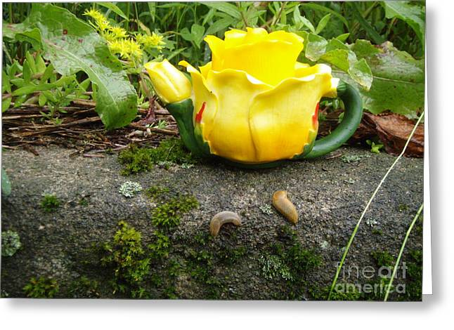 Greeting Card featuring the photograph Tea For Two by Kristine Nora