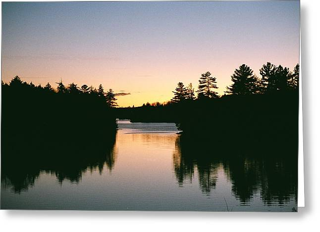 Greeting Card featuring the photograph Tea Lake Sunset by David Porteus