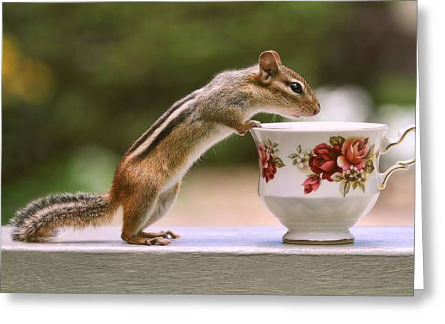 Tea Time With Chipmunk Greeting Card