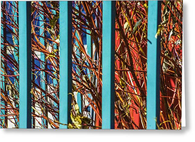 Teal Fence Greeting Card by Raymond Kunst