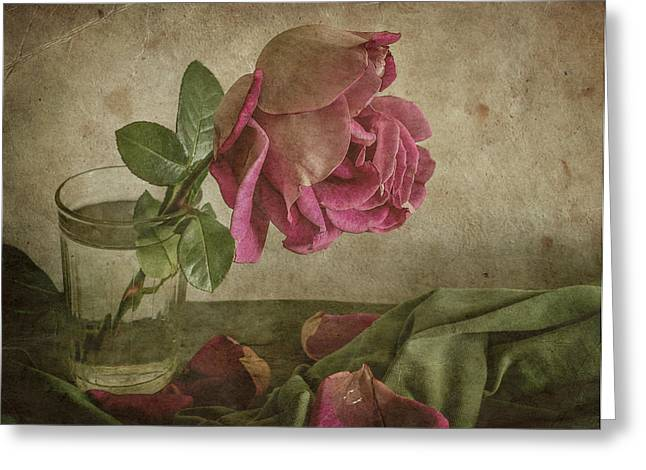 Tear Of Rose Greeting Card