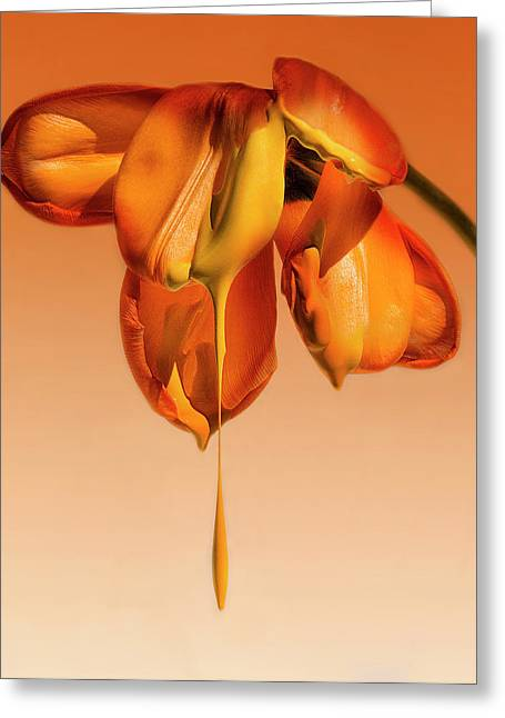 Tears Of A Flower Greeting Card
