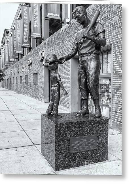 Teddy Ballgame II Greeting Card by Clarence Holmes