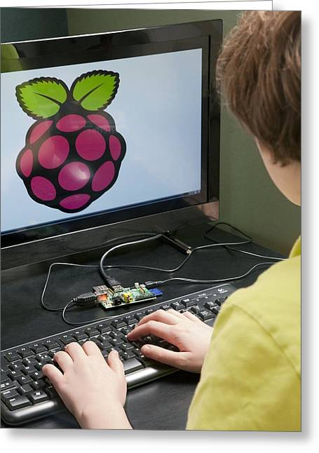 Teenager Using A Raspberry Pi Greeting Card by Science Photo Library
