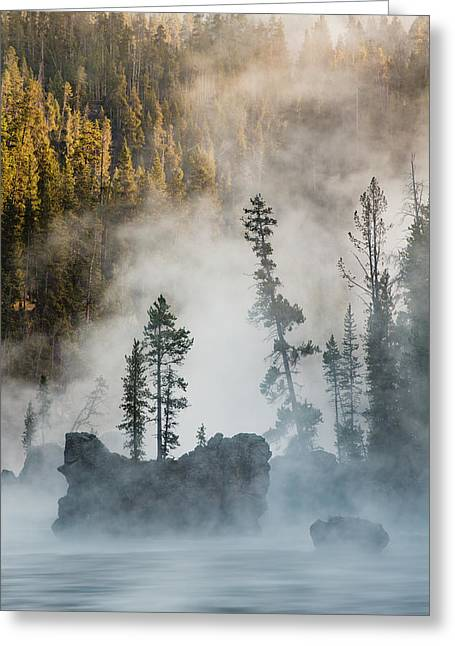Tees And Boulders In Yellowstone River Greeting Card