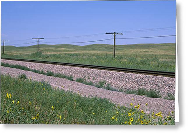 Telephone Poles Along A Railroad Track Greeting Card by Panoramic Images