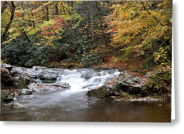 Telico River Cascade Greeting Card