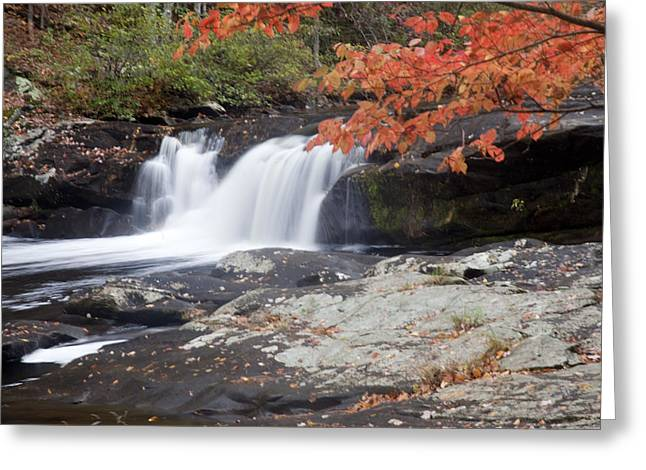 Greeting Card featuring the photograph Telico River Waterfall by Robert Camp