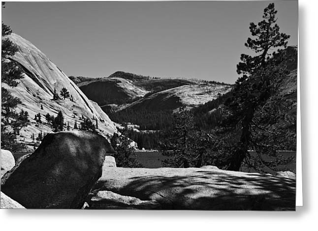 Tenaya Lake In Yosemite Greeting Card