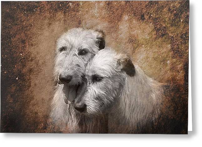 Tenderness Greeting Card by Mary OMalley