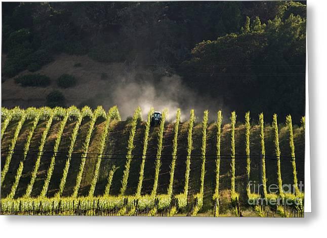 Tending A California Vineyard Greeting Card