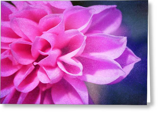 Tendre Greeting Card by Angela Bruno