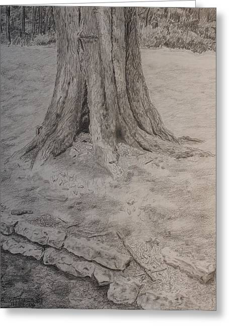 Tennessee Tree And Rock Wall Greeting Card by Arthur Witulski