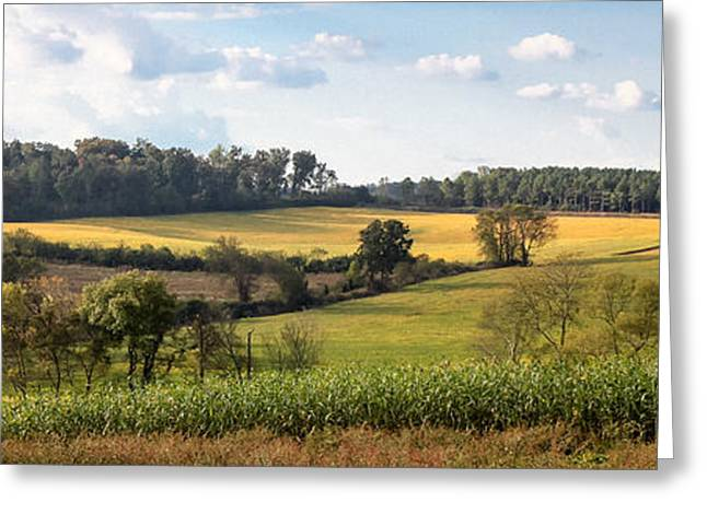 Greeting Card featuring the photograph Tennessee Valley by Todd Blanchard