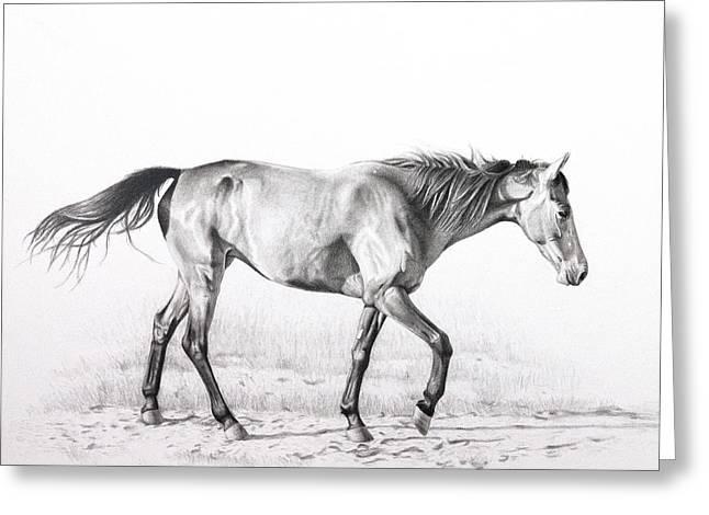 Tennessee Walking Horse Greeting Card by Karen Broemmelsick