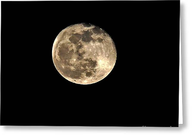 Teresa The Moon Greeting Card by Kip Krause