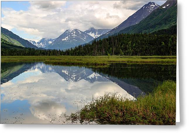 Tern Lake Alaska Greeting Card