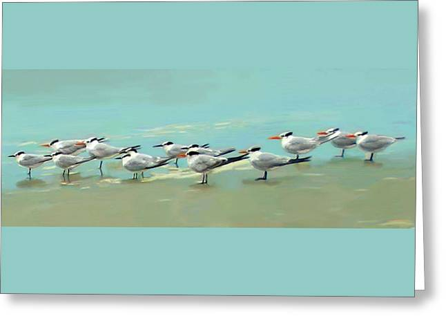 Tern Tern Tern Greeting Card