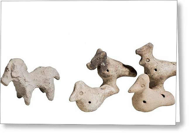 Terra-cotta Horse And Birds Greeting Card