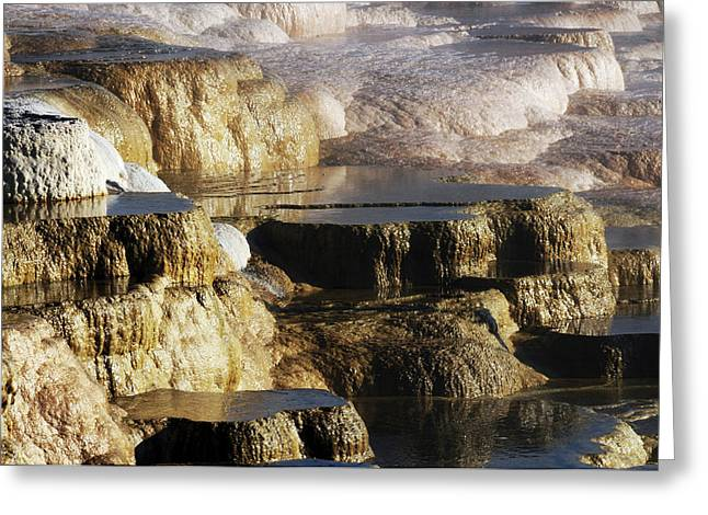 Terraces, Mammoth Hot Springs Greeting Card