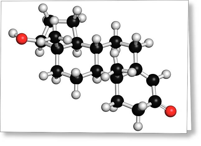 Testosterone Molecule Greeting Card by Molekuul