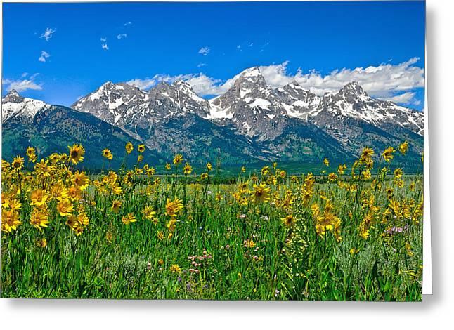 Teton Peaks And Flowers Greeting Card