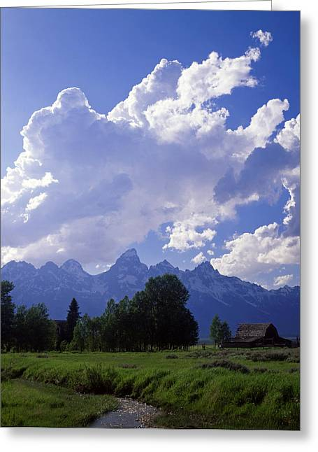 Teton Ranch Afternoon Greeting Card by Mike Norton