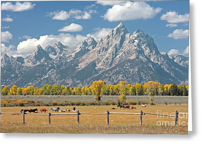 Teton Range Greeting Card