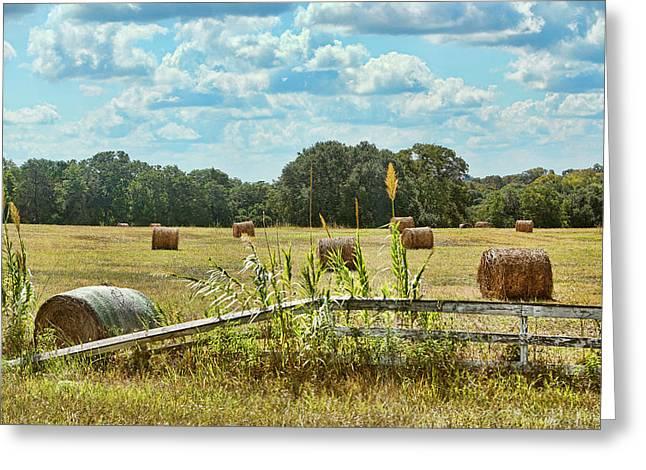 Texan Field Of Hay Bales Greeting Card