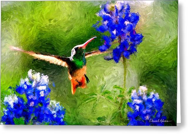 Da161 Texas Bluebonnet Hummingbird By Daniel Adams Greeting Card