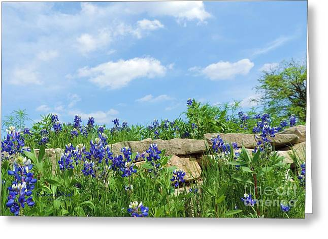 Texas Bluebonnets 08 Greeting Card